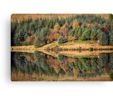 Trees Reflected, Brecon Beacons Canvas Print