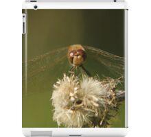 Dragons rest  iPad Case/Skin