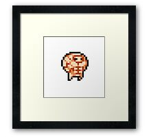 Nuclear Throne Steroids Framed Print