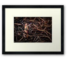 From The End of Magic Framed Print