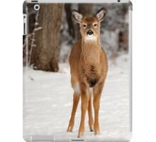 Deer in Snow iPad Case/Skin