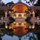 Balboa Park - Evening by camfischer