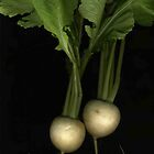 Two Turnips by Barbara Wyeth