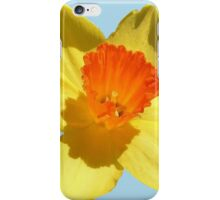 Daffodil Emblem Isolated iPhone Case/Skin