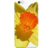 Daffodil Emblem Isolated On White iPhone Case/Skin