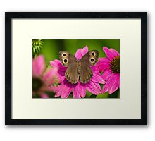 Pretty Butterfly with Flowers Framed Print