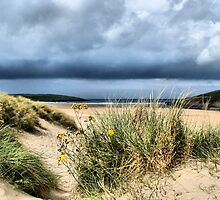 Dunes at Crantock by Rob Booth