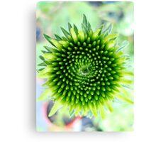 Green Psychedelia Canvas Print