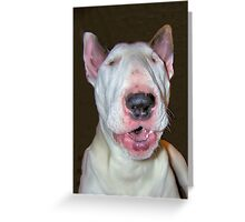 Barking Mad Monty Greeting Card