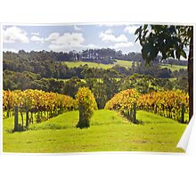 Ricketty Gate Vineyard Poster