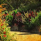 Secret Garden Paths by Kathy Baccari