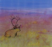 Caribou on the Tundra by carolyndoe