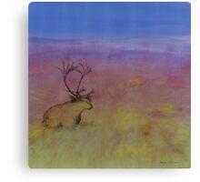 Caribou on the Tundra Canvas Print