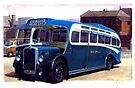 Royal Blue Bristol LL6B by Mike Jeffries