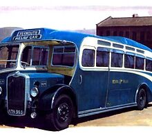 Royal Blue Bristol LL6B by Mike Jeffries
