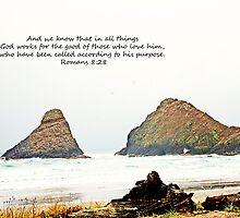 Romans 8:28 by stacytoddphotog