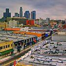 LA Morning Panoramic by Benjamin Curtis