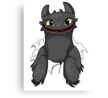 Curious Toothless Canvas Print