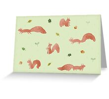 Red Squirrels Greeting Card