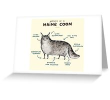 Anatomy of a Maine Coon Greeting Card