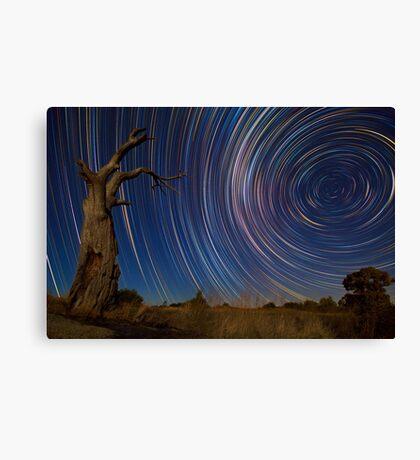 Dead Tree Stars II Canvas Print