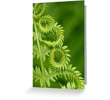 Fern Leaf Detail Greeting Card