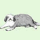 Old English Sheepdog by Sophie Corrigan
