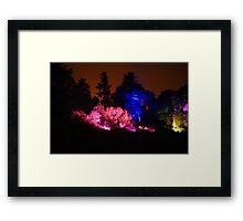 Colour Wheel (2) - Botanic Lights 2015 Framed Print