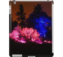 Colour Wheel (2) - Botanic Lights 2015 iPad Case/Skin