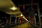 kurilpa bridge, brisbane, queensland, australia by gary roberts