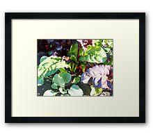 leafy vegetables Framed Print