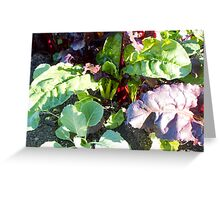 leafy vegetables Greeting Card