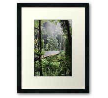 A bridge to Gondwanaland Framed Print