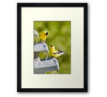 Is The Water Good Framed Print