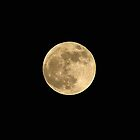 Super Moon by alexofalabama