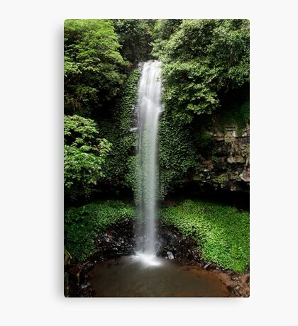 Crystal Shower Falls Canvas Print