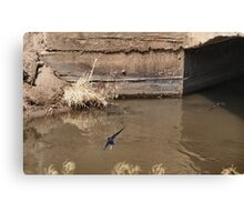 Arial Masters Canvas Print