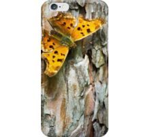 Eastern Comma Butterfly iPhone Case/Skin