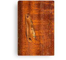 Macro photo of rust Canvas Print