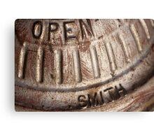Macro photo of silver fire hydrant Canvas Print