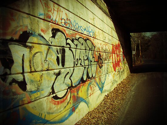 Graffiti under the Bridge by MotherNature