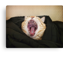 Shut up! I am trying to sleep! Canvas Print