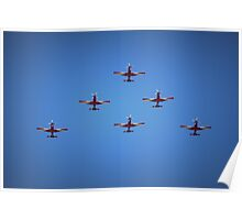 Roulettes of Pearce Poster