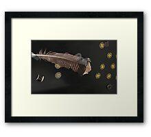 Miscellaneous Stuff Framed Print
