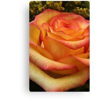 Orange Red Rose Canvas Print