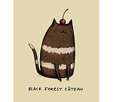 Black Forest Câteau Photographic Print