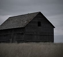 Old Barn by Steph Peesker
