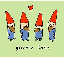 Gnome Love Photographic Print