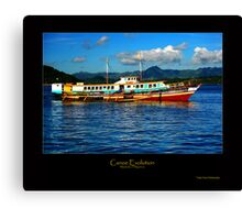 Canoe Evolution Canvas Print