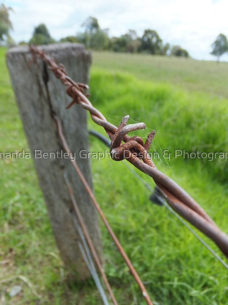 Barbwire Fence by Amanda Bentley Graphic Design & Photography